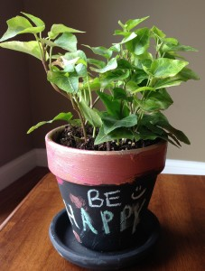 Be Happy, potted plants, diy